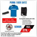 Puma 10er Satz Spirit T-Shirt Training Senior